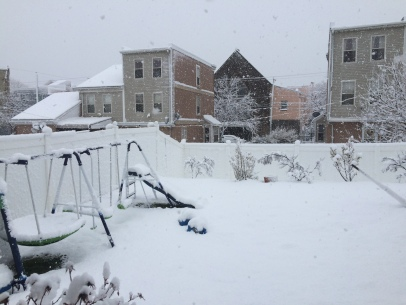 Snow day 3.7.18