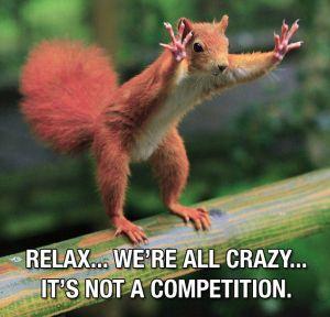 Crazy-Squirrel